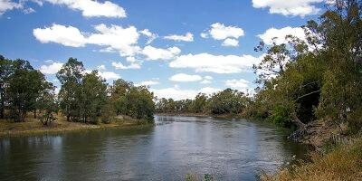 Removalists Murrumbidgee, New South Wales, Australia